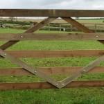 diamond field gate