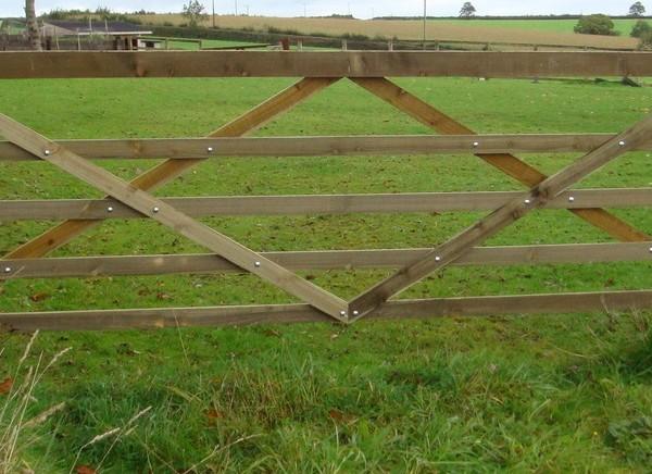 diamond field gate 2